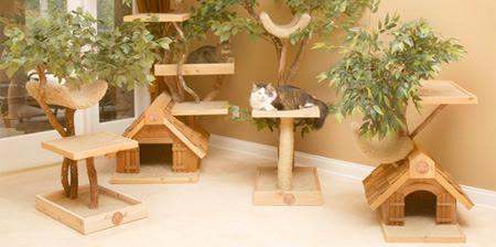 cattreehouse01.jpg