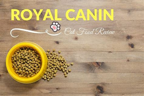royal canin cat food review tinpaw