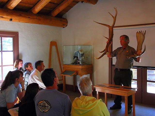 IMG_8794 Ranger Talk: Moose or Elk