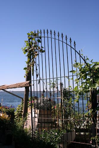 Harbor gate
