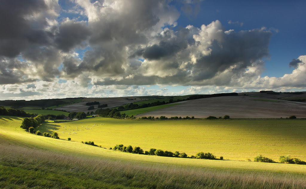 Waterpit Hill, South Downs