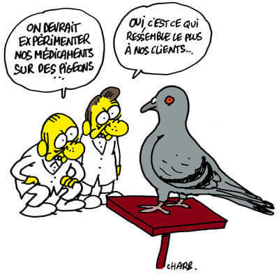 Charlie Hebdo Pigeon by Charb