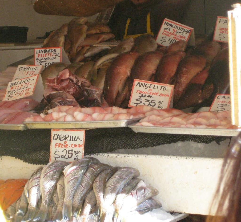 Angelito Shark for Fish Tacos at the Fish Market Ensenada