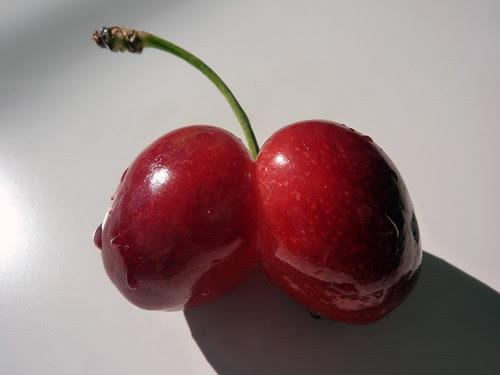 Double Cherry by Lara604