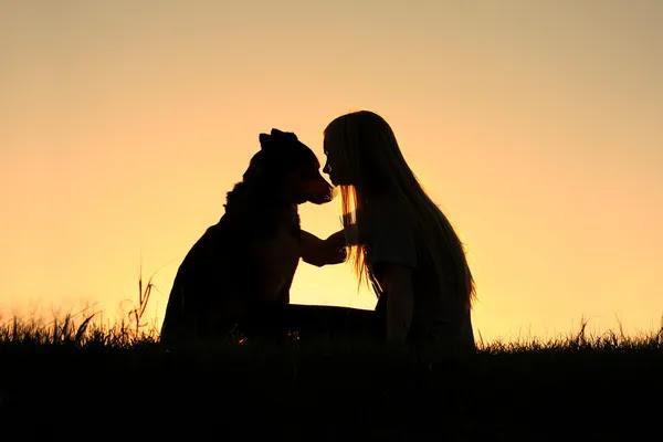 Silhueta de cachorro mulher abraços — Fotografia de Stock #34385841
