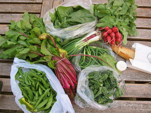 Farmers Market Finds 6/6