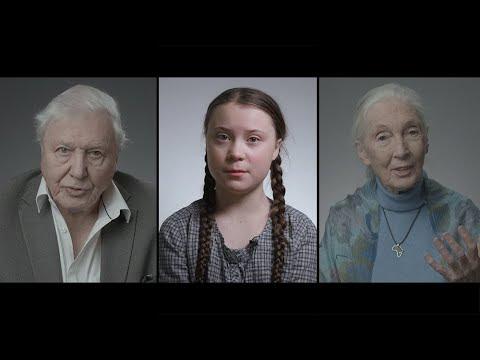 David Attenborough and Greta Thunberg's plea for the planet