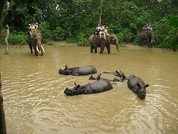 #9 Chitwan National Park