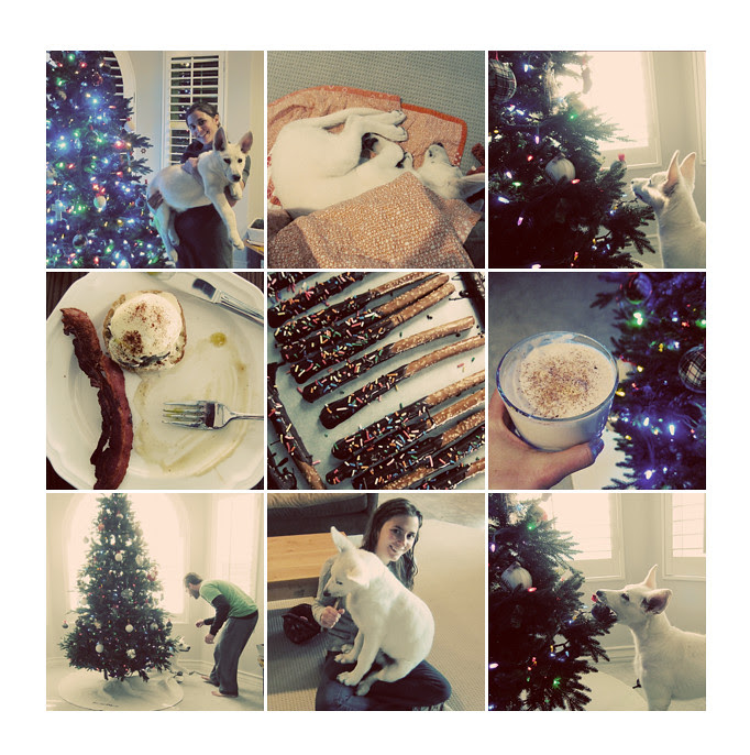 fleury christmas collage 3