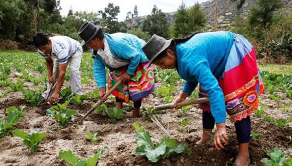 Campesinos sembrando la tierra