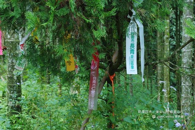 2011_0717_後尖山步道登山行DSC_2120