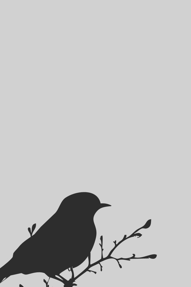 Cool Minimalist iPhone Wallpapers  The Nology
