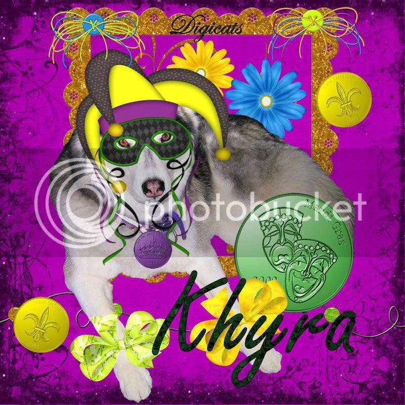 Mardi Gras,Dog