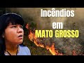 A opinião de Ysani Kalapalo sobre as queimadas no Mato Grosso
