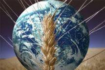 agricoltura mondo