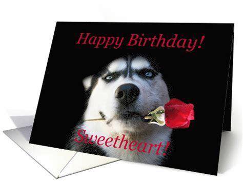 Happy Birthday Husky Dog With Rose card (1261988)