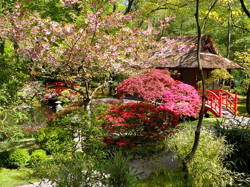 The Japanese garden of The Hague by Frans Schmit