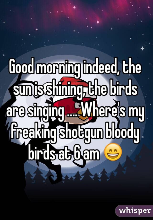 Good Morning Indeed The Sun Is Shining The Birds Are Singing