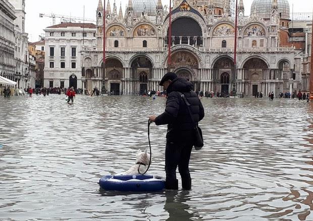 Resultado de imagen de acqua alta venezia