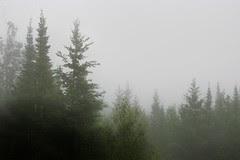 Fog in Grand Marais