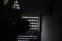 The Dead Poet's Tale by firoze shakir photographerno1