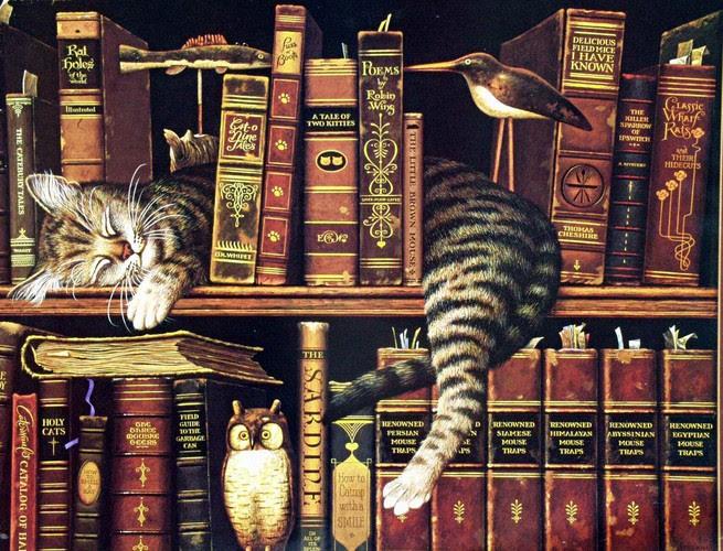 Pisică de bibliotecă