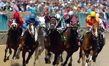 Kentucky Downs enjoys record-setting betting, purses