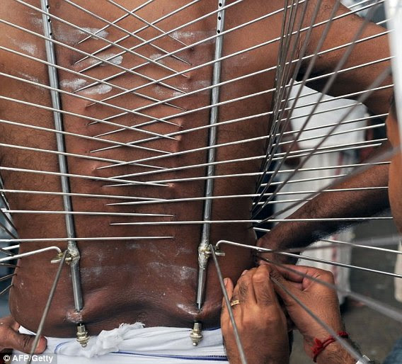 A Hindu devotee has his skin pierced with metal prongs before taking part in a traditional ceremony during the annual Hindu festival