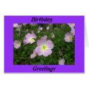 Birthday Greetings Floral Card