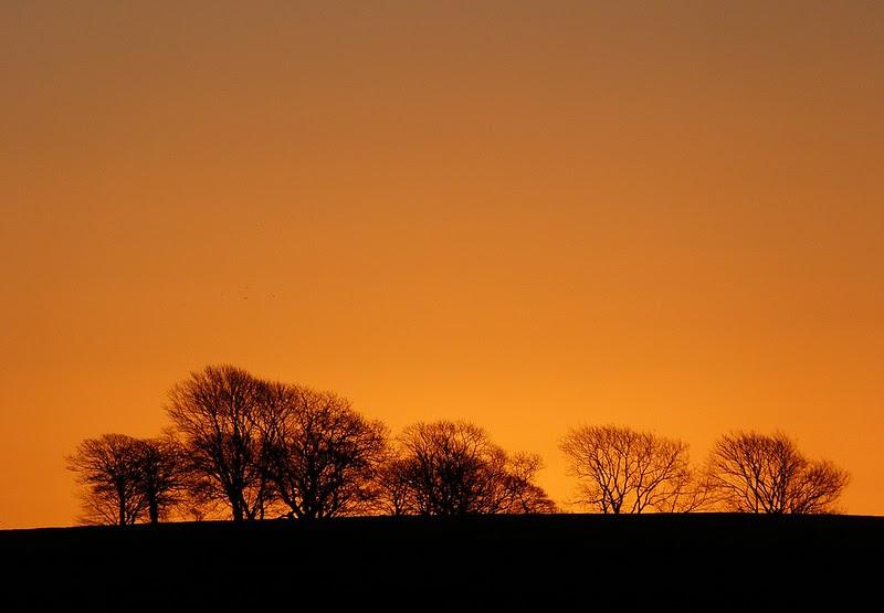 P1060645 - Sunrise from Cefn Drum