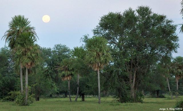 La Luna en Karanda