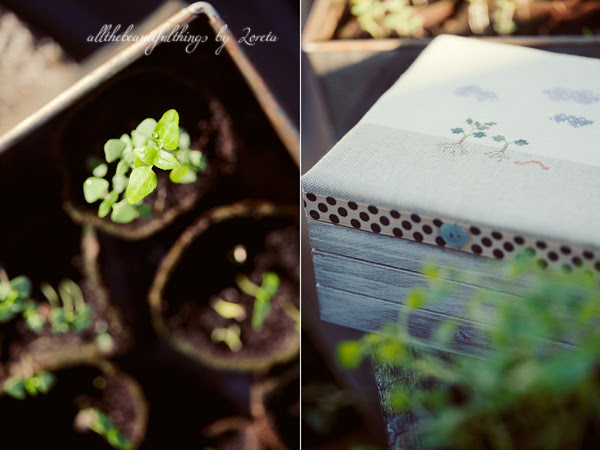 Pricking Out  (Kazuko Aoki)