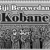 Kobanê è sola?