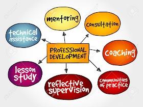 PROFESSIONAL DEVELOPMENT WITHIN TEACHER EDUCATION