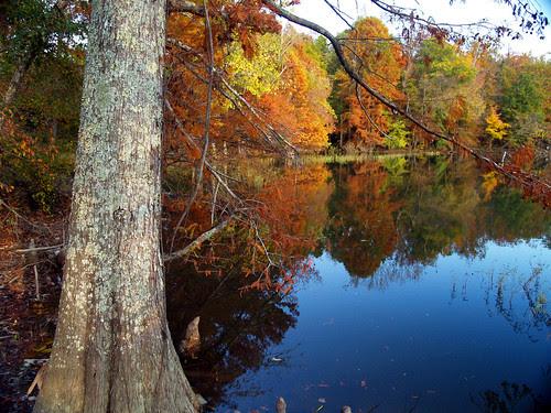 Lake Maumelle