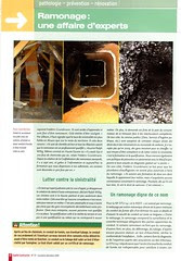 ramonage page2