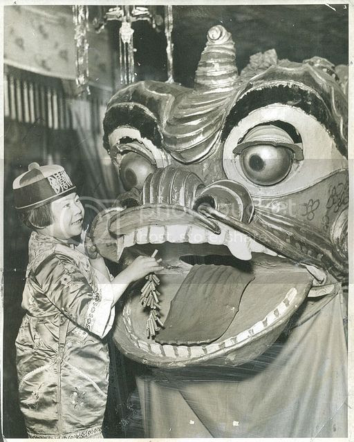 a cute youngster holders what appears to be a string of firecrackers in front of the mouth on a large dragon costume in this fantastic vintage chinese new