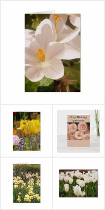 Flower Design Greeting Cards