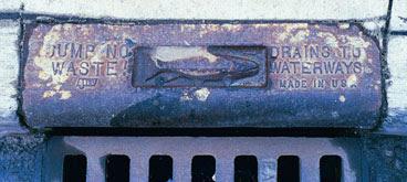 drains23