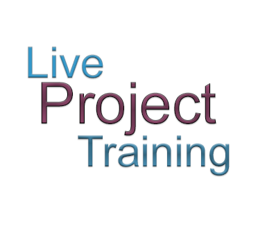 Live project training