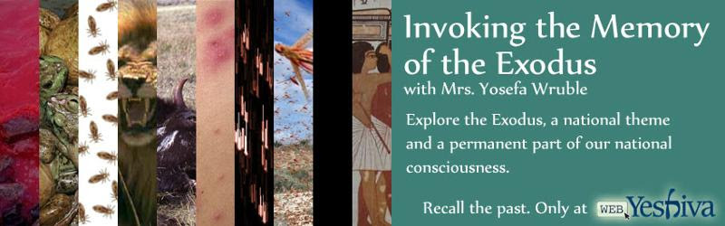 Pesach 2012: Invoking the Memory of the Exodus
