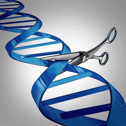 Illustration of scissors cutting DNA.