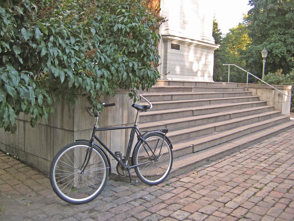 Todo el mundo tiene bicicleta