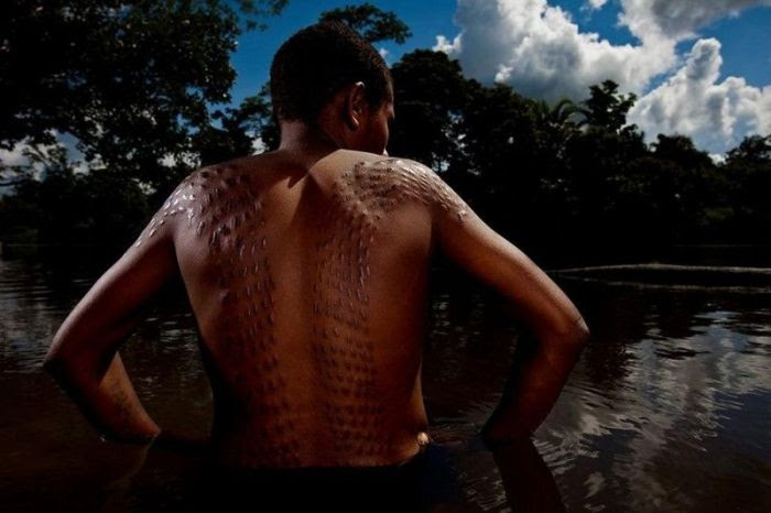 Let's look at how the indigenous people of Africa live in their province and visited the famous traveler Brent Stirton and brought the most interesting pictures!