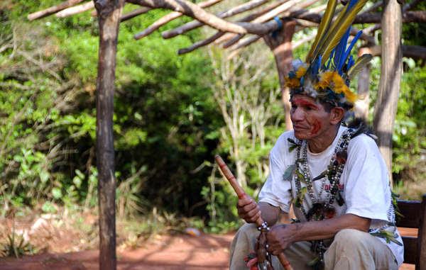 Os Guarani sofrem taxas muito altas de suicídio e violência por causa do roubo de suas terras
