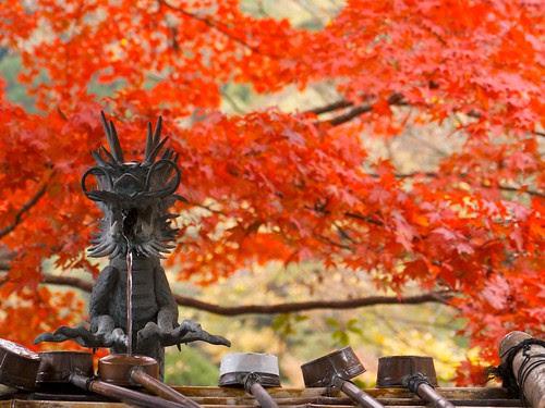 秋の大山詣で