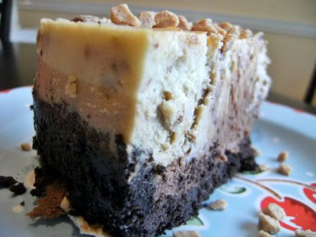 Julia's cheesecake slice