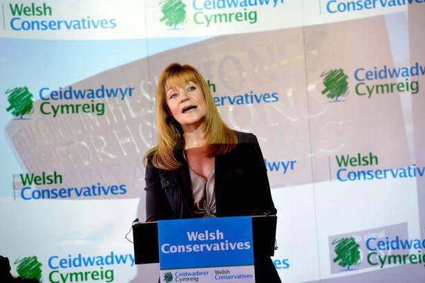 Dr. Kay Swinburne, Conservative MEP