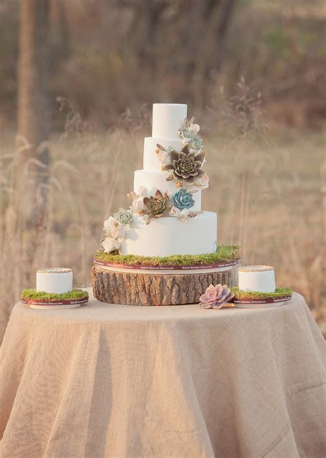 Cakes with Succulents Flowers: Such a Sweet Idea!