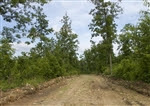 Missouri, Shannon County, 5.01 Acre Thunder Mountain Ranch, Lot 1. TERMS $175/Month